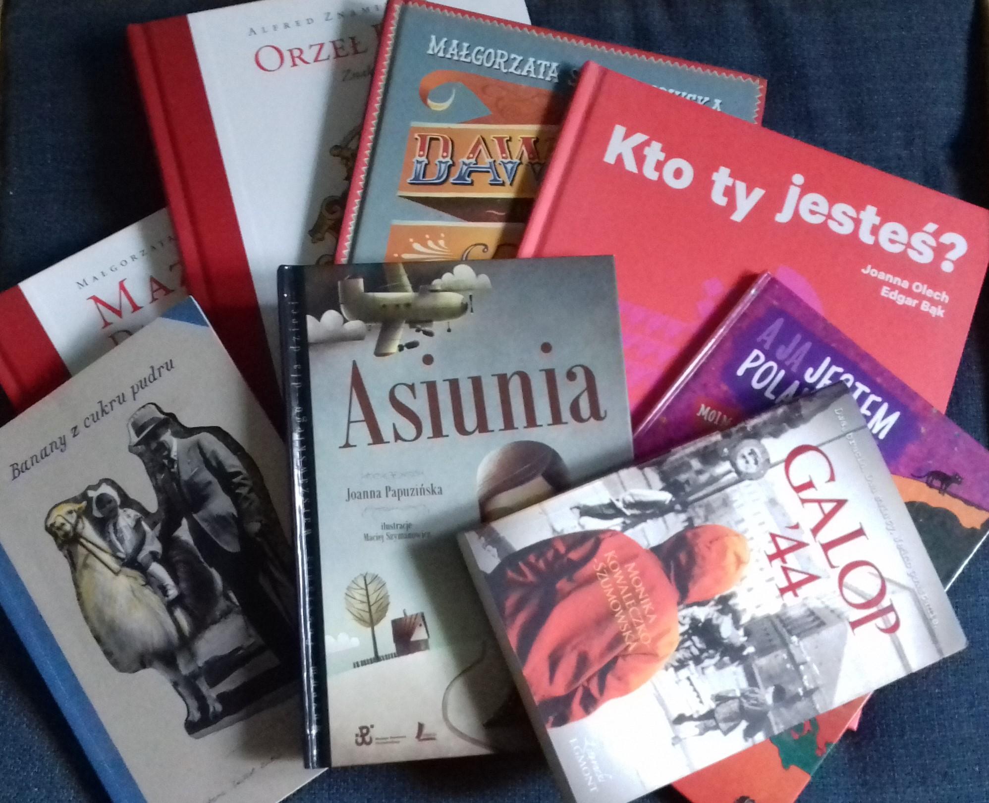 Trudne Tematy Patriotyzm Mały Pokój Z Książkami